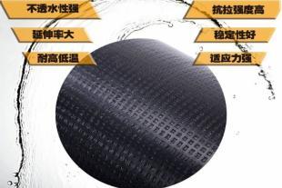 山东高聚物改性沥青卷材生产批发厂家