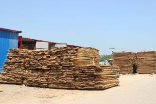 杨木直拼板供应