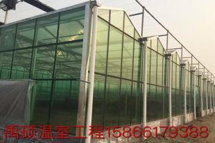纹洛温室大棚工程建造厂家