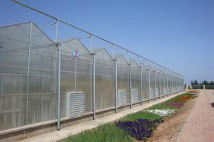 阳光板温室价格