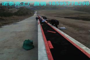 景区省时省力的输送设备 国产自控节能魔毯工厂售价