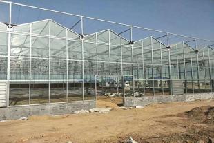 日光温室建设厂家