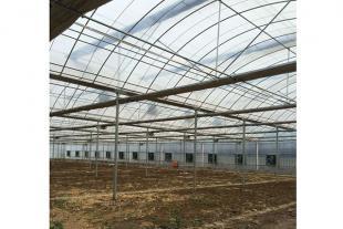 山东薄膜连栋温室生产