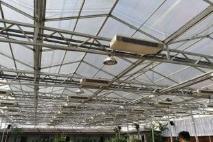 山东阳光板温室建设厂家
