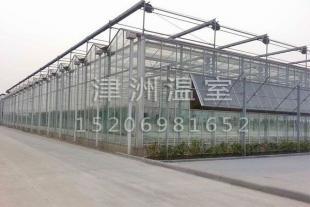 玻璃智能温室大棚建设