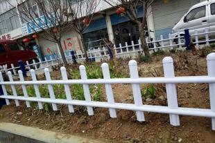 山东草坪护栏生产厂家
