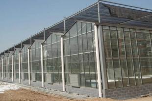 潍坊玻璃智能温室生产