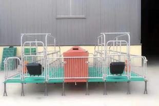 母猪产床 双体加厚分娩产仔床架现货出售