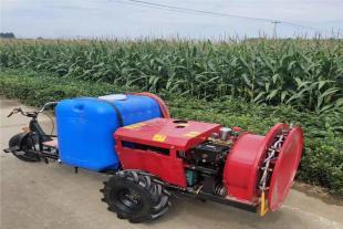 风送式喷雾器 汽油自走式果园打药机 家用三轮打药机