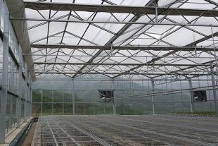 温室大棚建造厂
