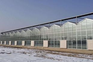 温室大棚建造价格