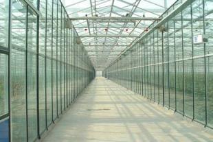 温室大棚厂家建设