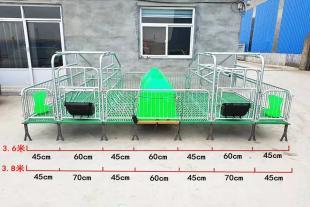 猪用产床 双体母猪分娩产仔床 现货出售