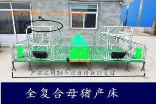 母猪产床 猪用分娩产仔床 现货出售