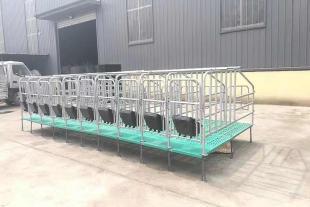 定位栏 十猪位一组现货出售 厂家直销
