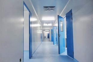 钢制洁净门,医用洁净门,彩钢板不锈钢板洁净门