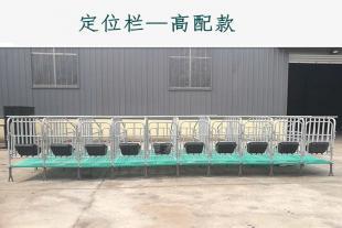 猪用限位栏 母猪定位架出售