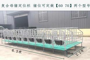 猪用定位栏价格 母猪限位栏厂家直销