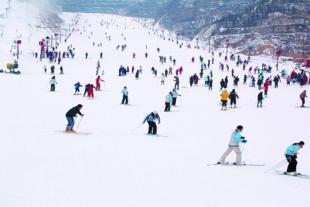 魔毯输送设备方便 滑雪场魔毯价格优惠